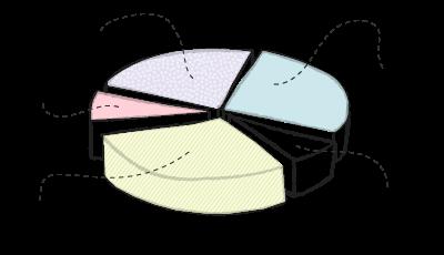 Craig pie chart