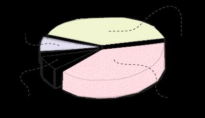 Benjamin pie chart
